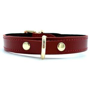 """0.75″ Mini Collar """"Tango"""" Red"""