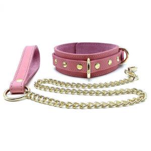 "Collar and Leash ""Tango"" Pink"